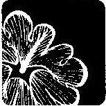 Loess Hills Floral Studio