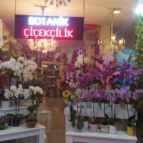 İskenderun Botanik Çiçekçilik