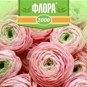 Флора2000.ру