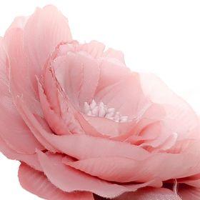 Rosa Affair