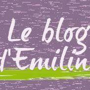 Le blog d'Emiline
