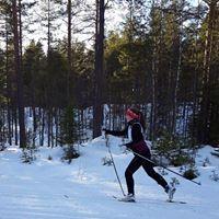 Klara Björkqvist