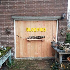Bloemies Aalsmeer