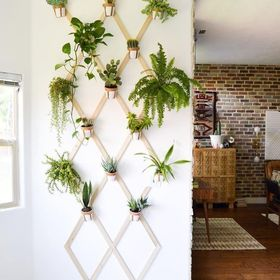 Home Decor In Budget
