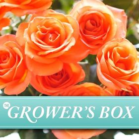 The Grower's Box