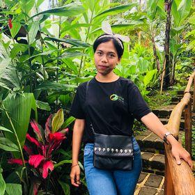 Dian Arsita Yanti, S.E