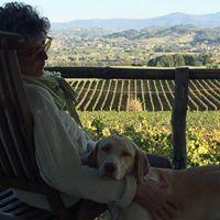 Anna Bed & Wine