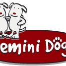 Gemini Dogs, Inc.