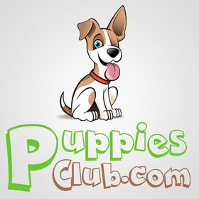 Puppies Club