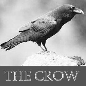 the crow collector