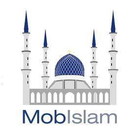 mobislam