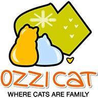 Natalie  Ozzi Cat Magazine
