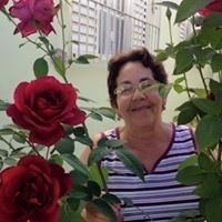 Dorotea Soares
