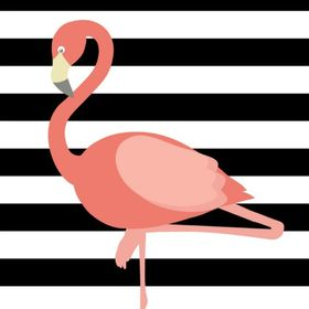 Flamant rose le blog