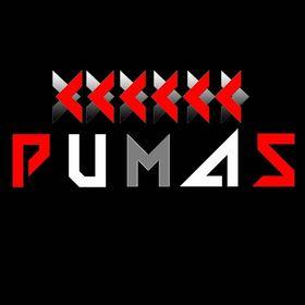 DJ Pumas