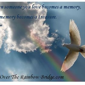 Just Over The Rainbow Bridge