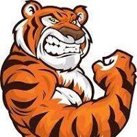 Germàn Tigre