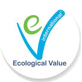 E V International Ltd.