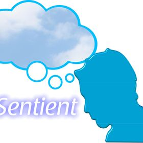 Sentient Counselling