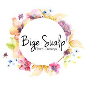 Bige Sualp