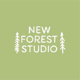 New Forest Studio ~ Wedding Photographer