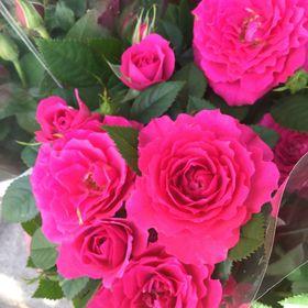 Flowersecret