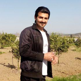 Majid Gholami