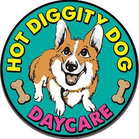 Hot Diggity Dog Daycare