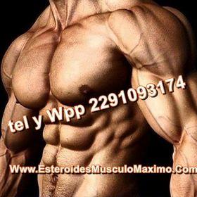 Esteroides Musculo Maximo.com