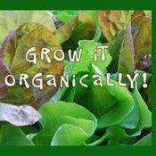 Grow-It-Organically. com