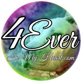 4Everinmyheart.com