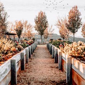 Outdoor Garden Network