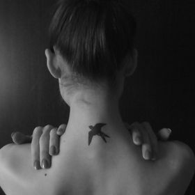 free swallow