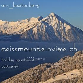 swissmountainview.ch