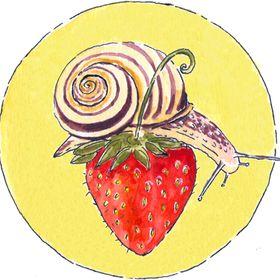 Strawberry Snail Illustrations