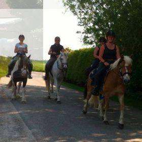 Paarden Toerisme Zeeland