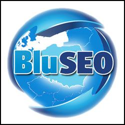 BluSEO Search Engine Marketing