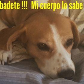 Haydy Larrea Cabanillas