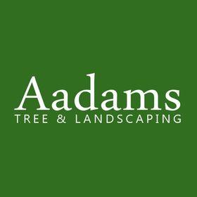 Aadams Landscaping LLC