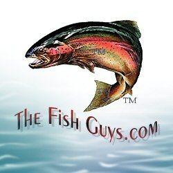 The Fish Guys