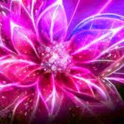 lili c