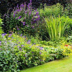 Wunderland Bio-Landschaftsarchitektur und Gartenplanung