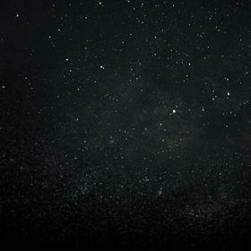 Gece Kuşu 🌌