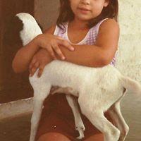 Rayla Ferme