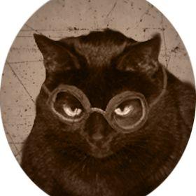 Steam Cat