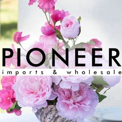 Pioneer Imports & Wholesale