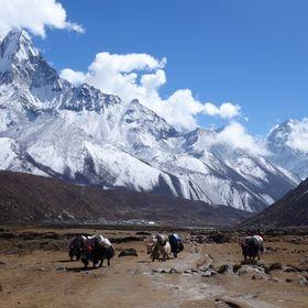 Trekking and Tour for Fair Tourism