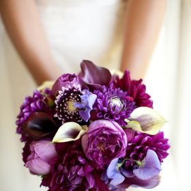 Vanda & Stems Floral Design