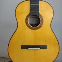Fernando Guitarras