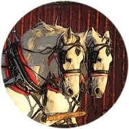 Cedar Knoll Draft Horses